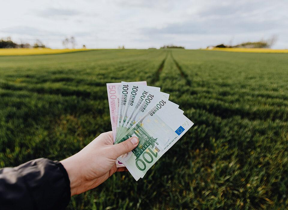 pessoa com dinheiro na mão em área rural