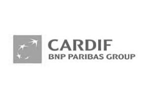 Carddif-01